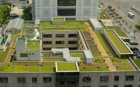 种植屋面系统